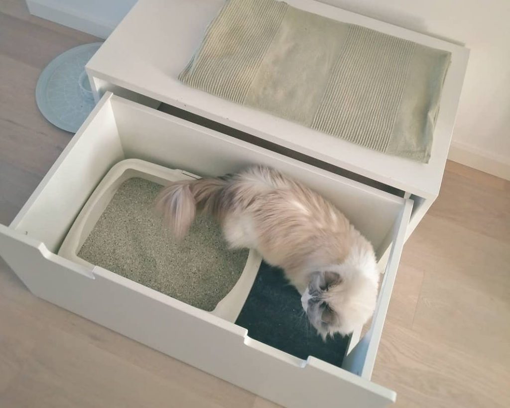 Versteckte Katzenklo Lösung